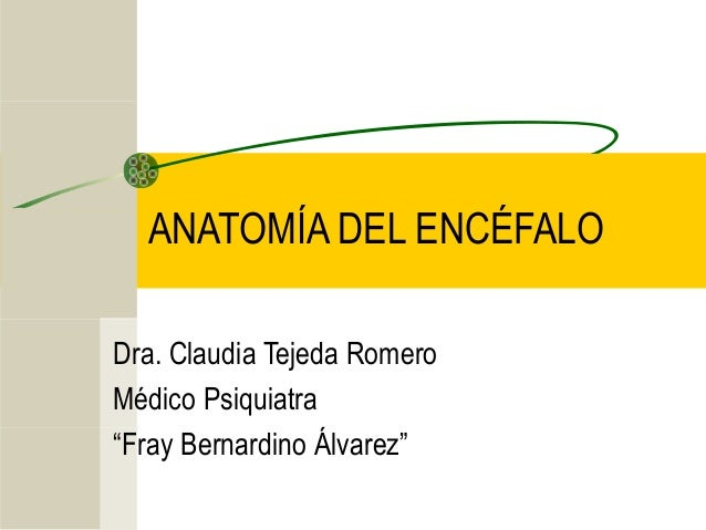 "ANATOMÍA DEL ENCÉFALO Dra. Claudia Tejeda Romero Médico Psiquiatra ""Fray Bernardino Álvarez"""