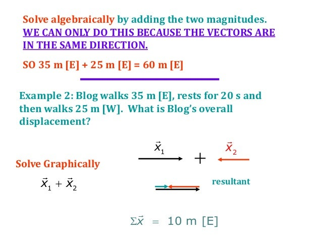 Do parallel vectors have the same magnitude