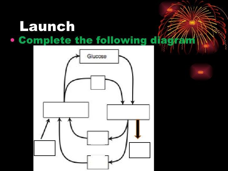 Launch <ul><li>Complete the following diagram </li></ul>