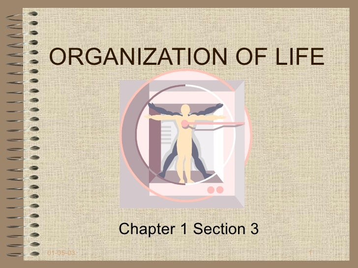 ORGANIZATION OF LIFE           Chapter 1 Section 301-05-03                         1