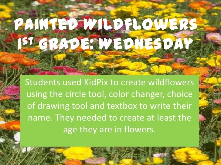 Painted Wildflowers1st Grade: Wednesday Students used KidPix to create wildflowers using the circle tool, color changer, c...