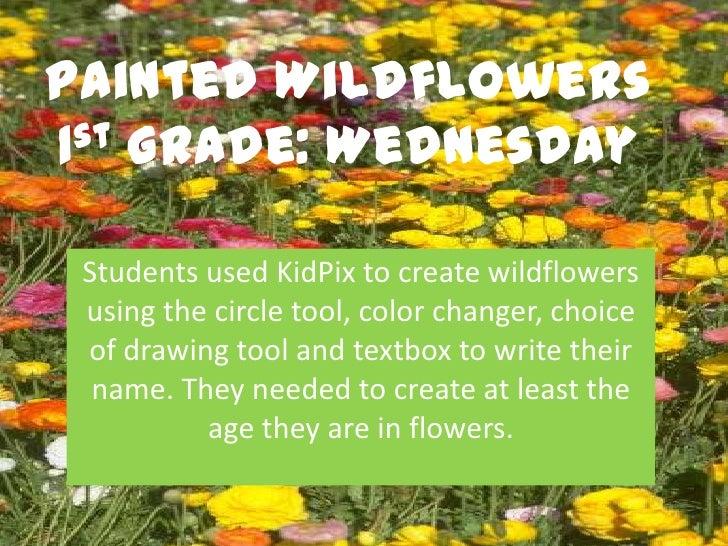 1.3 painted wildflowers