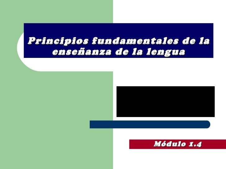 Principios fundamentales de la enseñanza de la lengua Módulo 1.4