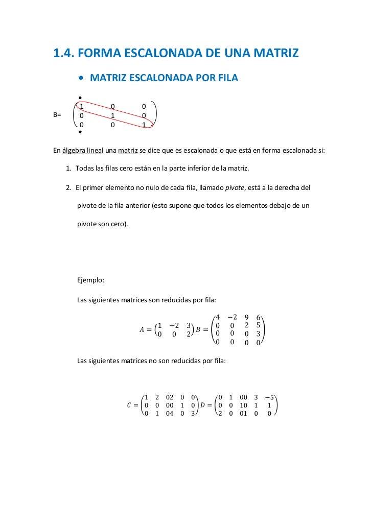1.4. FORMA ESCALONADA DE UNA MATRIZ             MATRIZ ESCALONADA POR FILA         1          0          0B=       0      ...