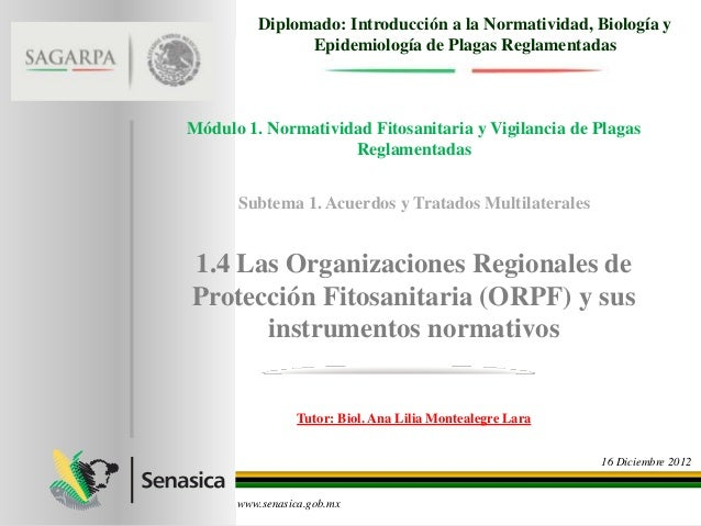 Diplomado: Introducción a la Normatividad, Biología y               Epidemiología de Plagas ReglamentadasMódulo 1. Normati...