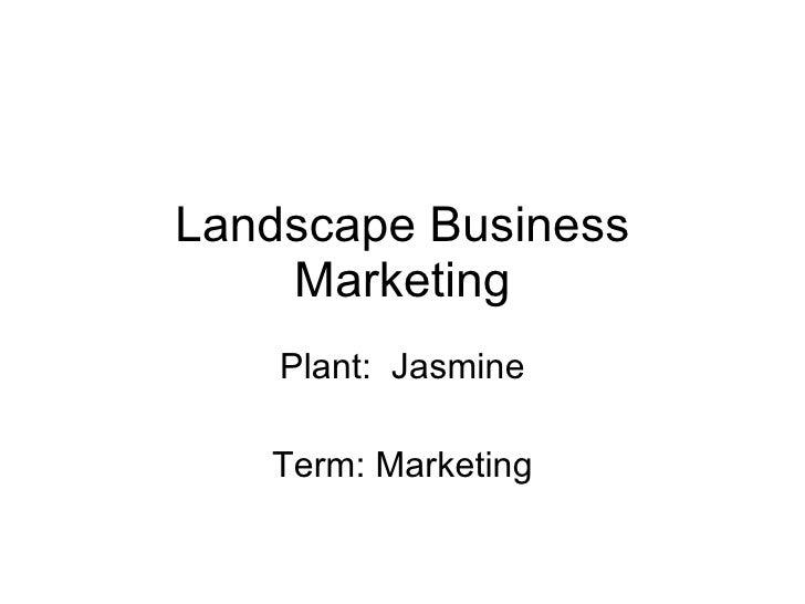 Landscape Business Marketing Plant:  Jasmine Term: Marketing