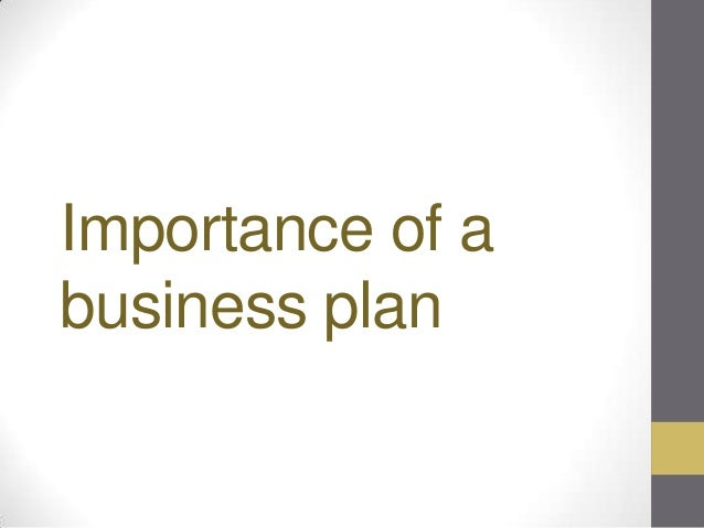 Essay on the Importance of a Business Plan