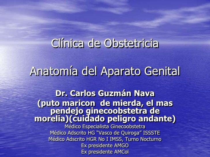 Clínica de Obstetricia  Anatomía del Aparato Genital     Dr. Carlos Guzmán Nava (puto maricon de mierda, el mas    pendejo...