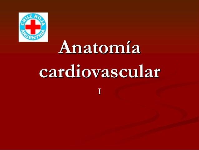 AnatomíacardiovascularI