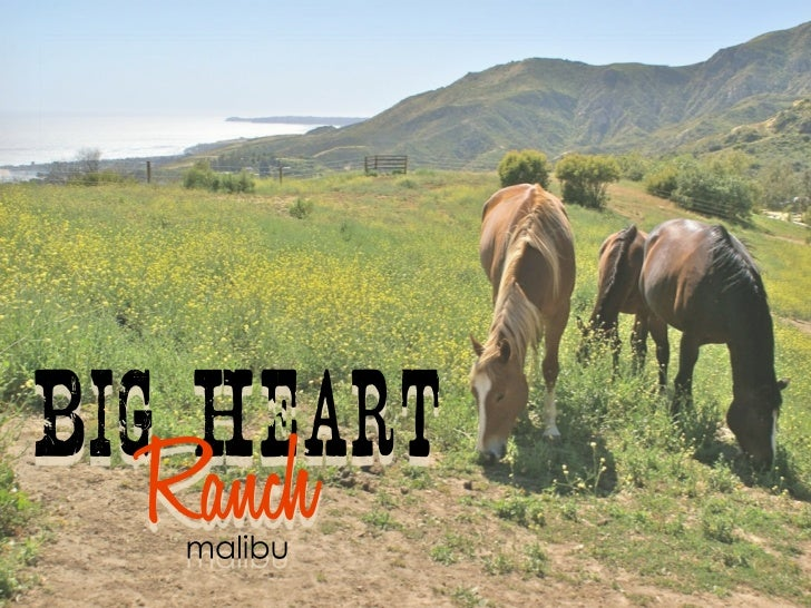 Big Ranch Heart is home to     Seven Generations Child and Family      Community Counseling Centers       Native American ...