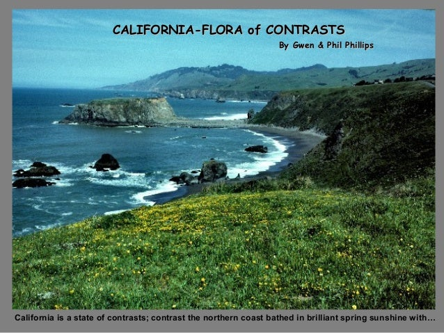 CALIFORNIA-FLORA of CONTRASTSCALIFORNIA-FLORA of CONTRASTSBy Gwen & Phil PhillipsBy Gwen & Phil PhillipsCalifornia is a st...