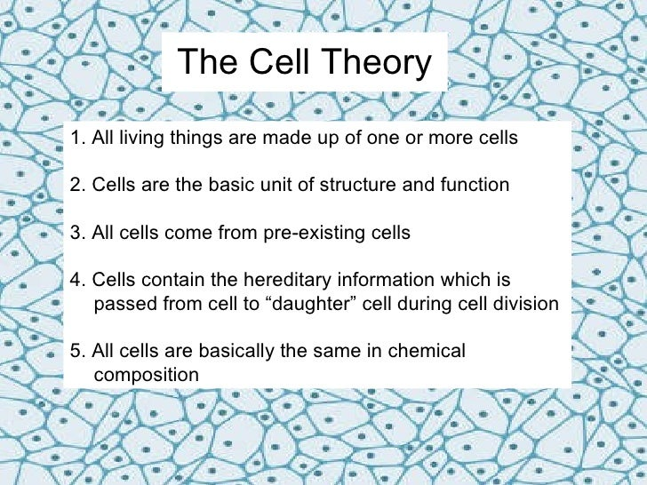 an introduction to the main ideas of the cell theory The german doctor rudolf virchow proposed that all cells result from the division of previously existing cells, and this idea became a key piece of modern cell theory virchow also founded the.