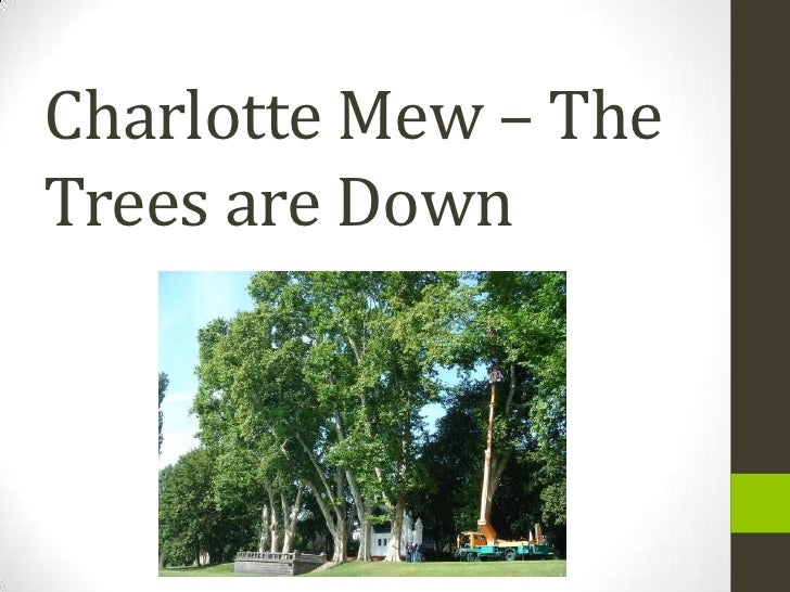 the trees are down by charlotte And he cried with a loud voice: hurt not the earth, neither the sea, nor the trees - revelation they are cutting down the great plane-trees at the end of.