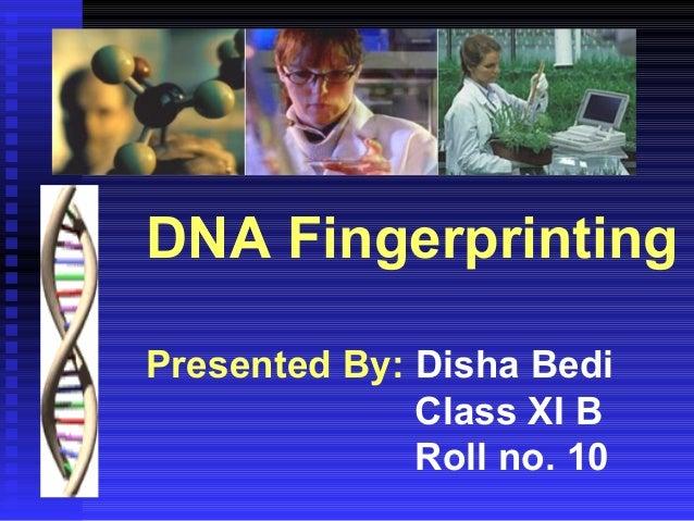 DNA Fingerprinting Presented By: Disha Bedi Class XI B Roll no. 10