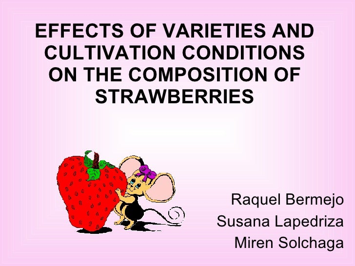 EFFECTS OF VARIETIES AND CULTIVATION CONDITIONS ON THE COMPOSITION OF STRAWBERRIES Raquel Bermejo Susana Lapedriza Miren S...
