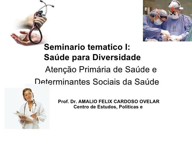 Seminario tematico I:  Saúde para Diversidade  Atenção Primária de Saúde eDeterminantes Sociais da Saúde     Prof. Dr. AMA...