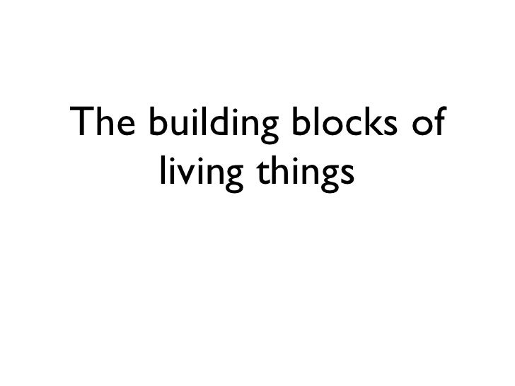 The building blocks of     living things