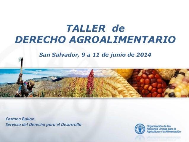 Carmen Bullon, FAO - Introducción de los DDHH a la sanidad agrícola