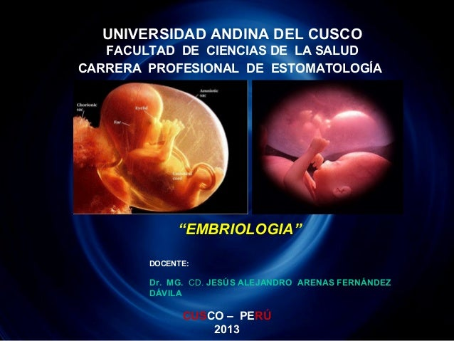 1. Introduccion a la Embriologia