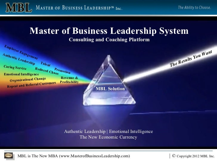 Master of Business Leadership System Consulting and Coaching Platform Reduced Chaos Revenue & Profitability Employee Engag...