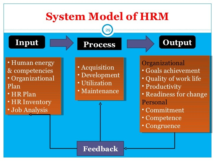 human resource management training and development essay