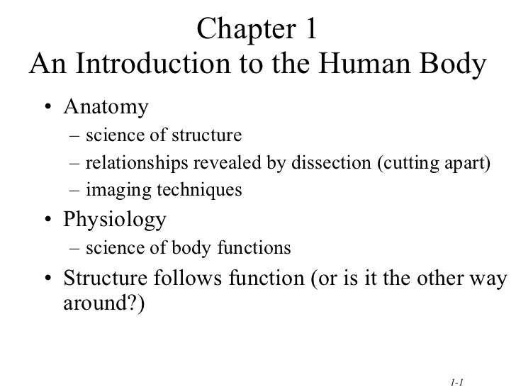 Chapter 1 An Introduction to the Human Body <ul><li>Anatomy </li></ul><ul><ul><li>science of structure </li></ul></ul><ul>...