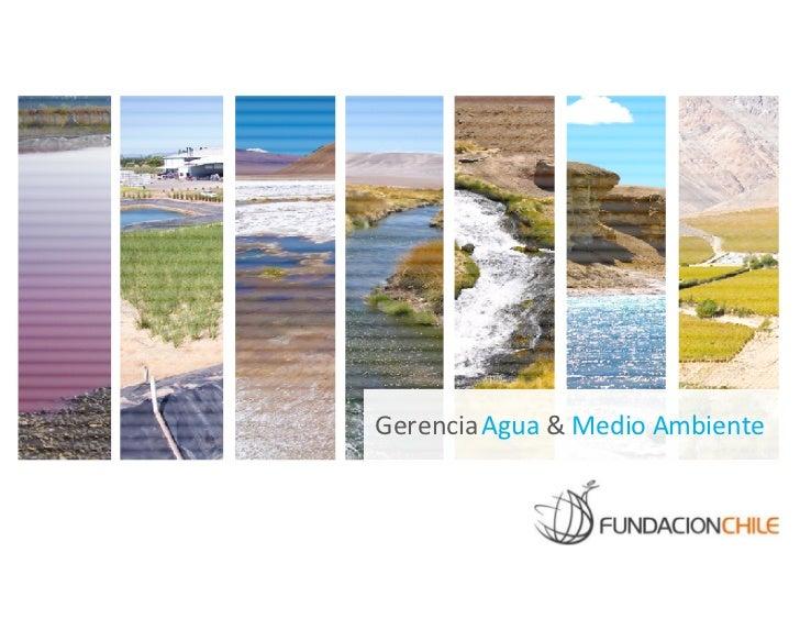 Gerencia Agua & Medio Ambiente