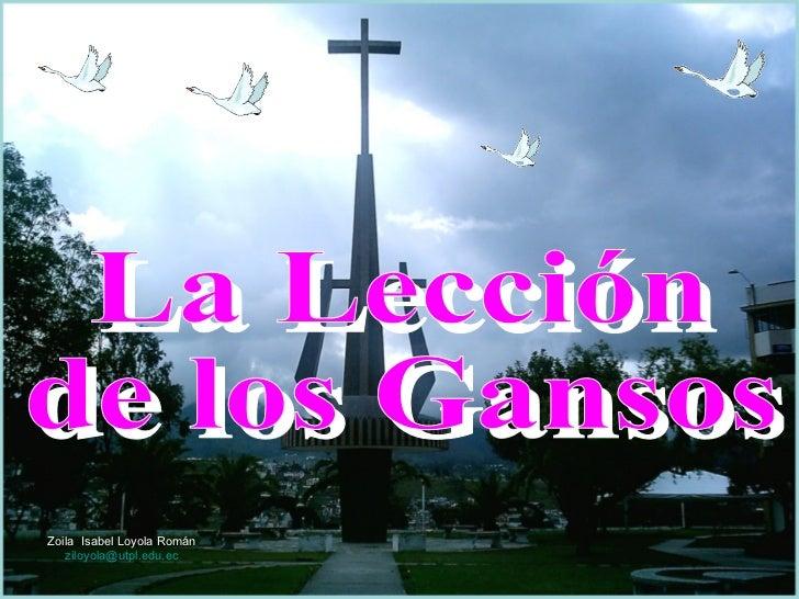 La Lección de los Gansos Zoila  Isabel Loyola Román ziloyola @utpl.edu.ec
