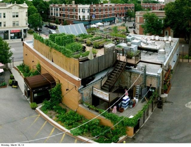Greening my City - Lisa Lee Benjamin