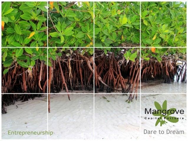 Entrepreneurship  Introduction to Mangrove Russia - Fall 2012  Dare to Dream 1  MANGROVE Capital Partners