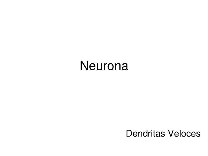 1. neuronas