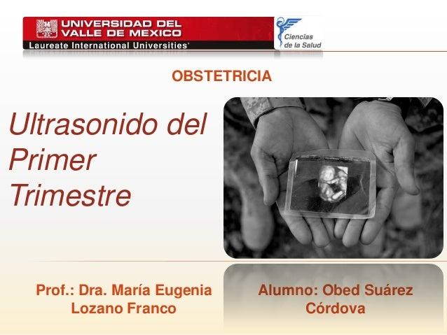 Ultrasonido del Primer Trimestre OBSTETRICIA Prof.: Dra. María Eugenia Lozano Franco Alumno: Obed Suárez Córdova