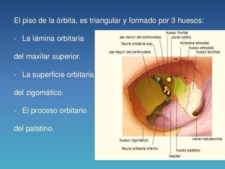 El hinchazón de la mejilla y el ojo de la causa