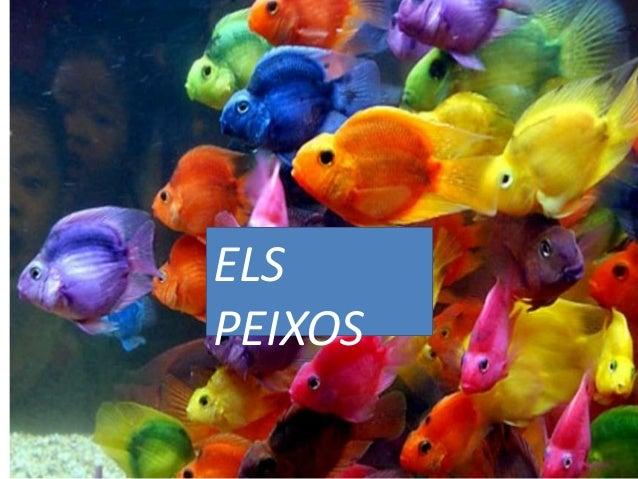 ELS PEIXOS