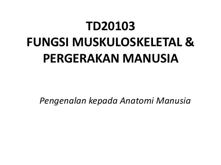 TD20103FUNGSI MUSKULOSKELETAL &  PERGERAKAN MANUSIA Pengenalan kepada Anatomi Manusia