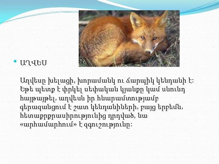 презентация1.pptx axves aleqs