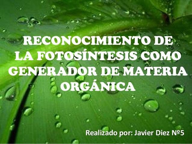 RECONOCIMIENTO DE LA FOTOSÍNTESIS COMO GENERADOR DE MATERIA ORGÁNICA  Realizado por: Javier Diez Nº5