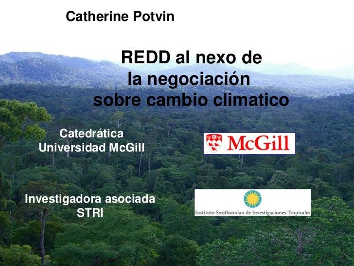 Catherine Potvin              REDD al nexo de               la negociación           sobre cambio climatico     Catedrátic...