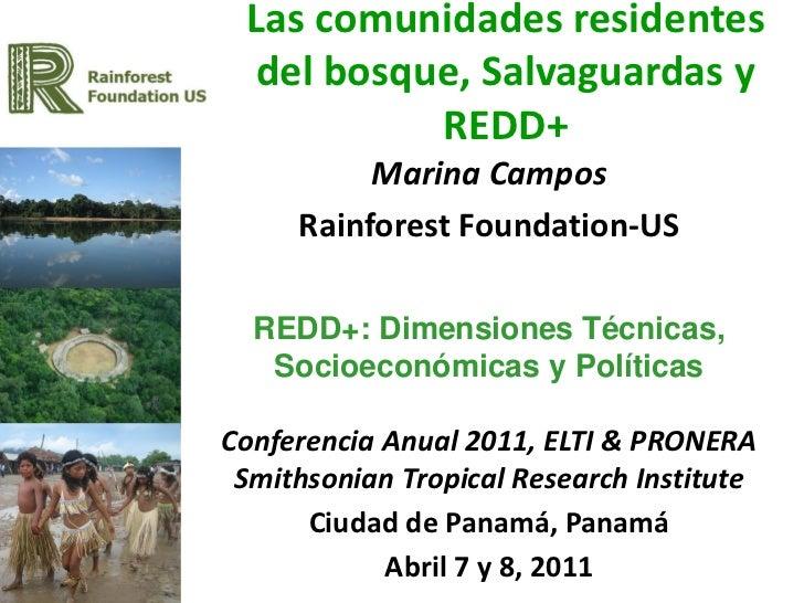 REDD Panama 2011 - Marina Campos / Comunidades del bosque, salvaguardas, REDD+