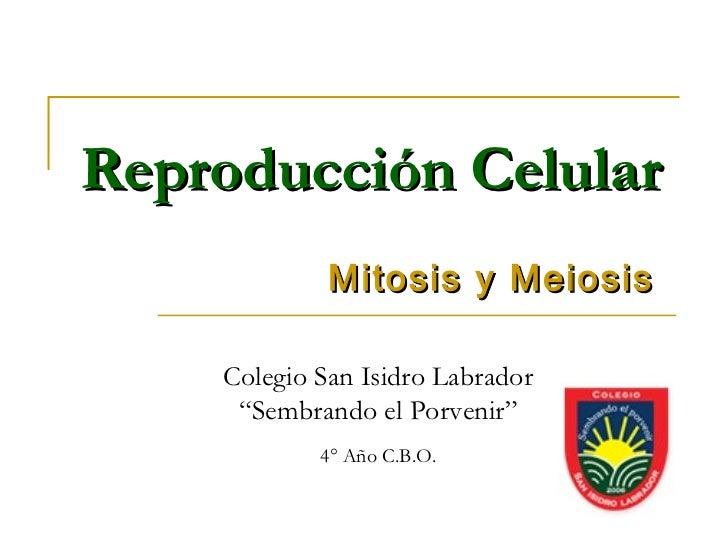 """Reproducción Celular             Mitosis y Meiosis    Colegio San Isidro Labrador     """"Sembrando el Porvenir""""            4..."""