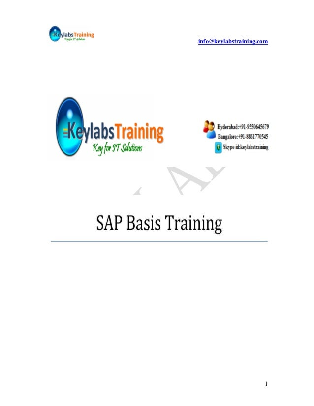 1.sap basis material_keylabs1