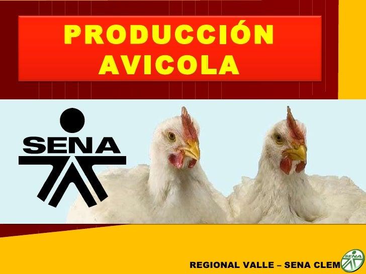 REGIONAL VALLE – SENA CLEM  PRODUCCIÓN AVICOLA