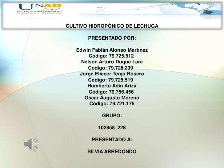 CULTIVO HIDROPÓNICO DE LECHUGA       PRESENTADO POR:   Edwin Fabián Alonso Martínez        Código: 79.725.512     Nelson A...