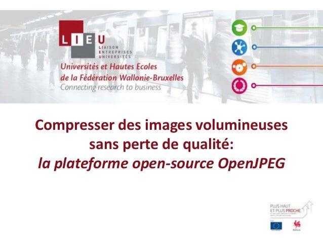 Compresser des images volumineuses sans perte de qualité: la plateforme open-source OpenJPEG