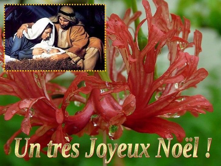 Un très Joyeux Noël !
