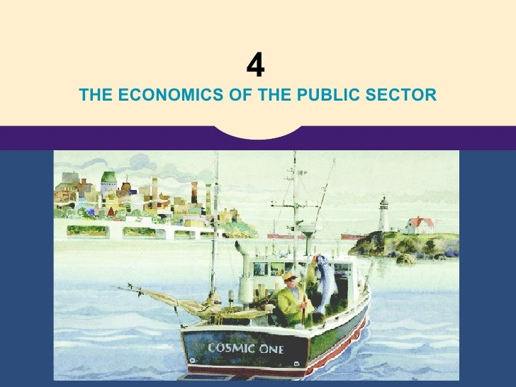 4   THE ECONOMICS OF THE PUBLIC SECTOR