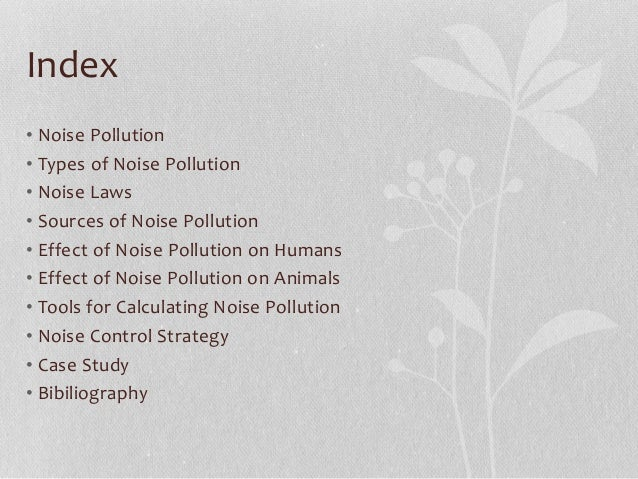 Noise pollution assignment