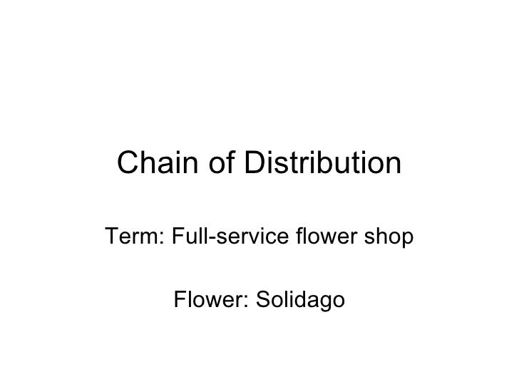 Chain of Distribution Term: Full-service flower shop Flower: Solidago