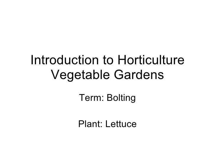 Introduction to Horticulture Vegetable Gardens Term: Bolting Plant: Lettuce