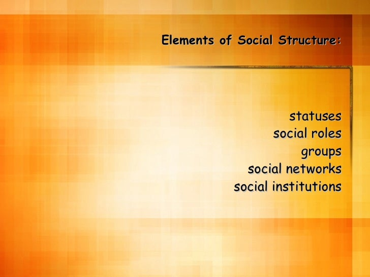 Elements of Social Structure: statuses social roles groups social networks social institutions
